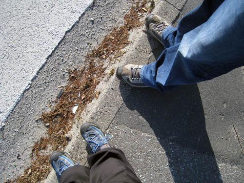 På med skoene