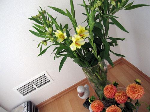 Dagens blomster
