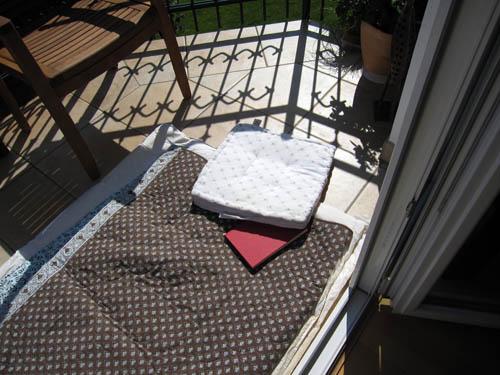 En lille hygger i solen
