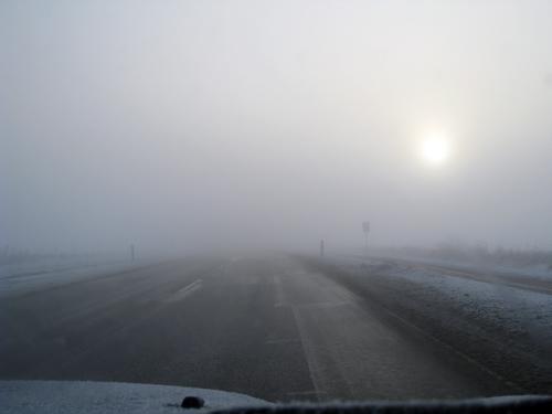 Tæt tåge...