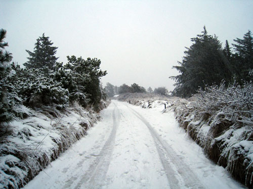 Snedøkkede veje...