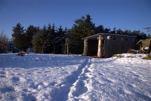 Frost stien...