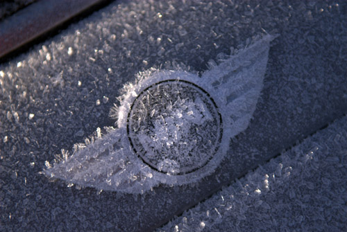 Mini frost...