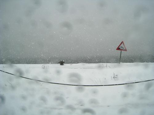 Sne på havnen i Aalborg...