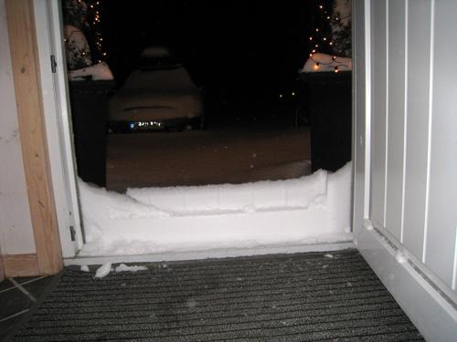Sne hegn...