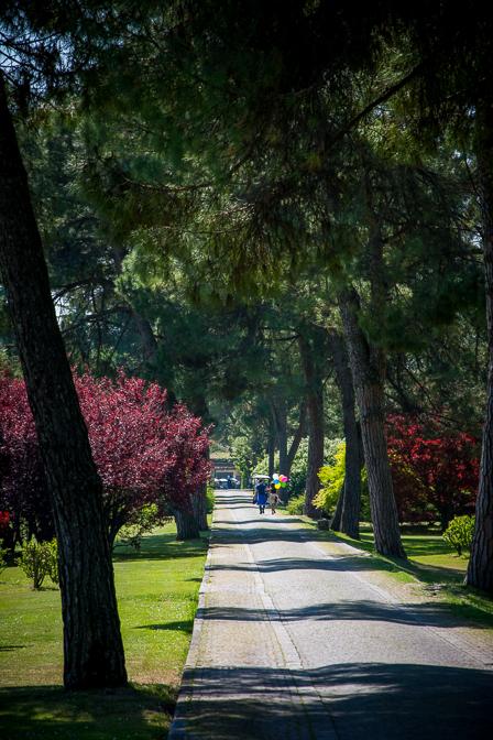 Parco Giardino Sigurta...