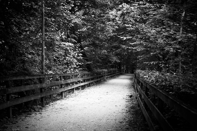 Freising i sort/hvid...