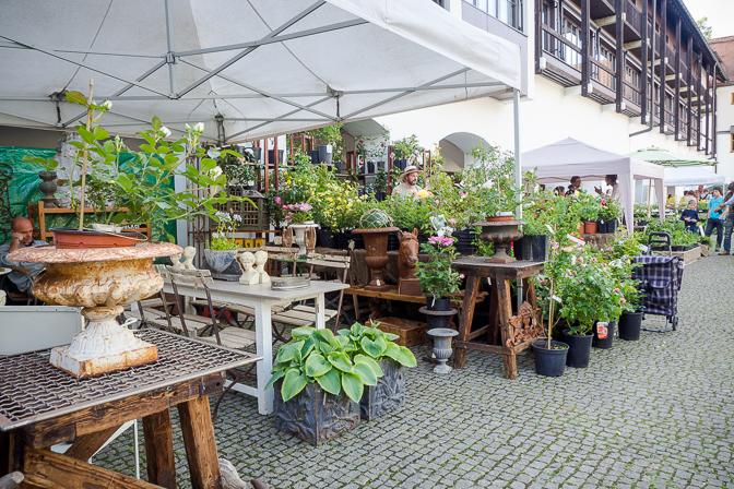 Freisinger Gartentage 2015...