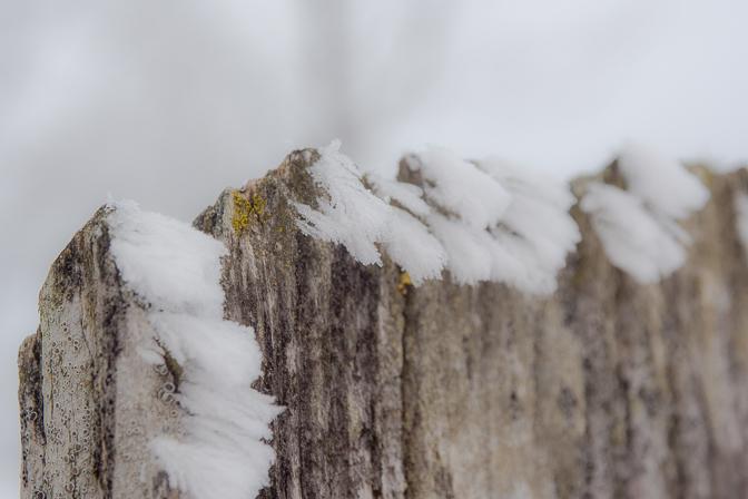 Vinteren i billeder...